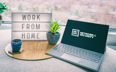 5 Steps To Efficient Working For Your Remote Workforce