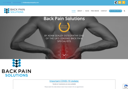 Back Pain Solutions - Osteopath